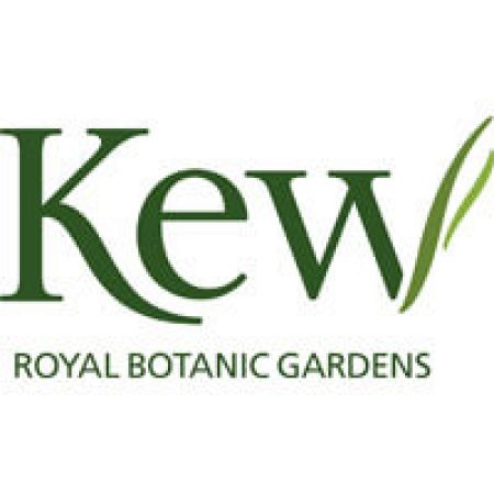 Kew Royal Botanical Gardens - an Entertainment Effects client
