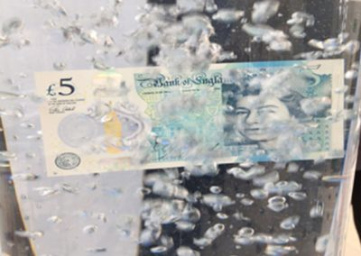 Bank of England Polymer £5 Note Launch