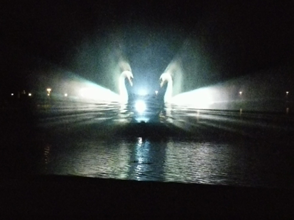 Centre Parcs displaying a water screen projection of swans